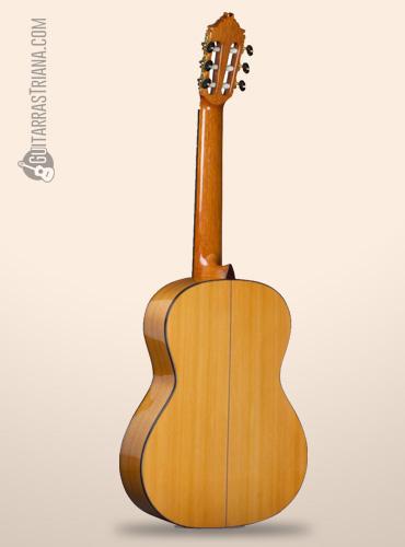 fondo de la guitarra alhambra 8fc