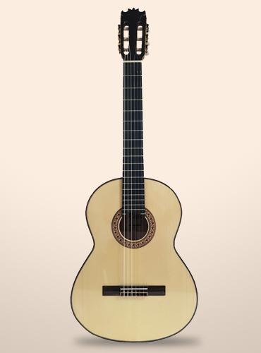 guitarra bros b40F
