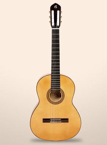 guitarra bros B20F
