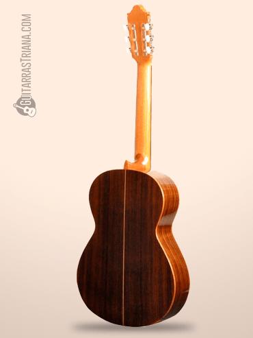 Guitarra Camps M-1 por detrás