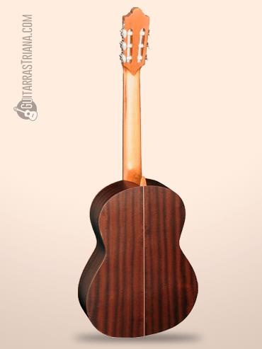 Guitarra Camps Sinfonia fondo