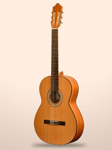 Guitarra Camps SN-1