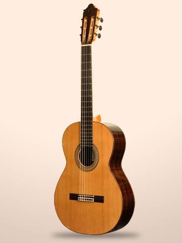 Guitarra Camps M6