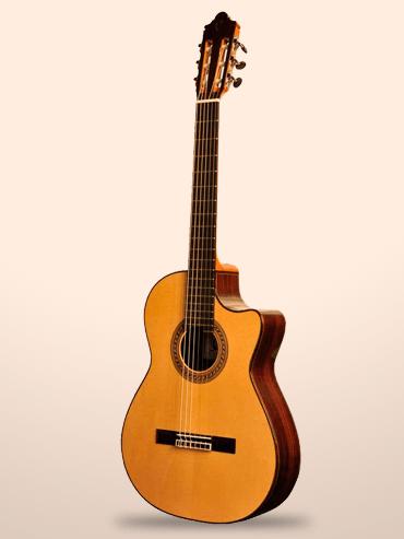 Guitarra camps m2000
