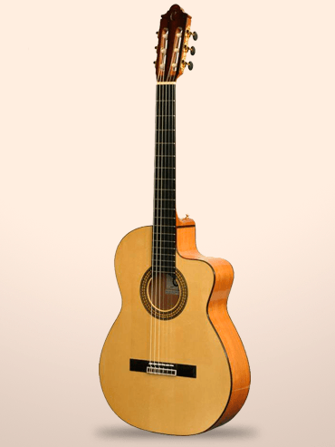 Guitarra Camps MC11