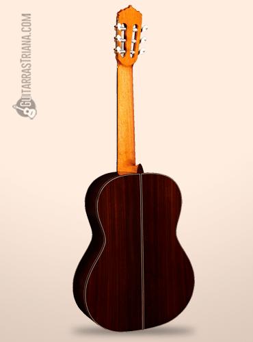 perfil trasero de la guitarra alhambra linea profesional