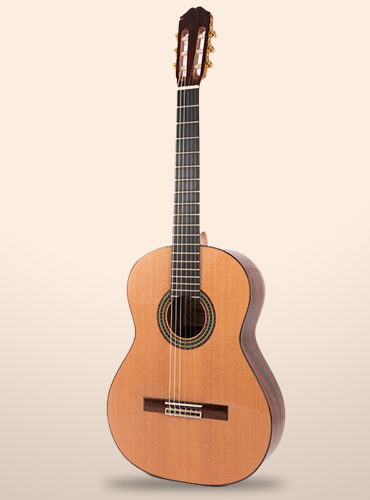 guitarra raimundo 129 cocobolo