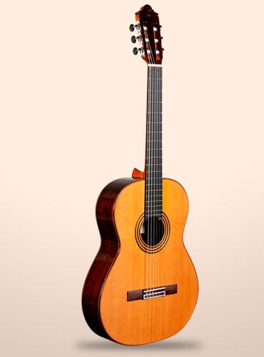 guitarra camps M16