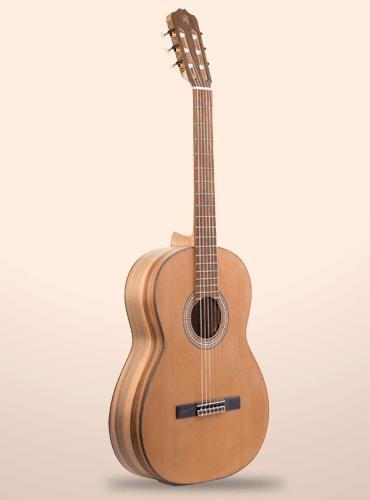 guitarra prudencio saez 160