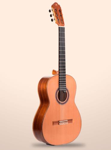 guitarra prudencio saez 290