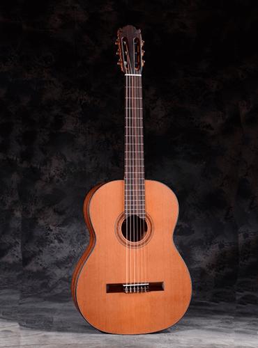 guitarra martínez ES04C