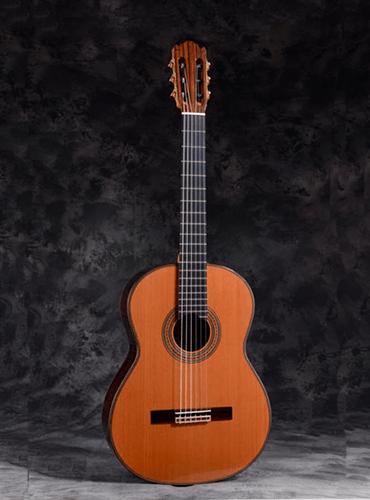 guitarra Martínez ES06