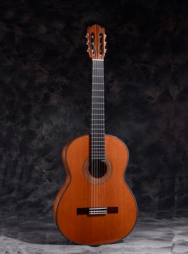 guitarra martínez es10c