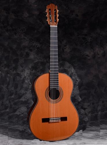 guitarra martínez es12c